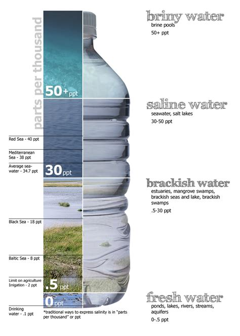 diagram of water salinity