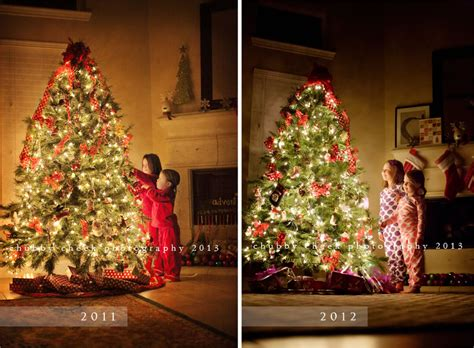 the tradition the tree and the tutorial how to