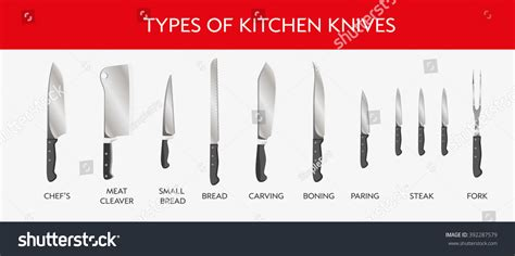 type of kitchen knives vector illustration types kitchen knives chefs stock vector 392287579