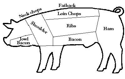 pig diagram pig processing faq