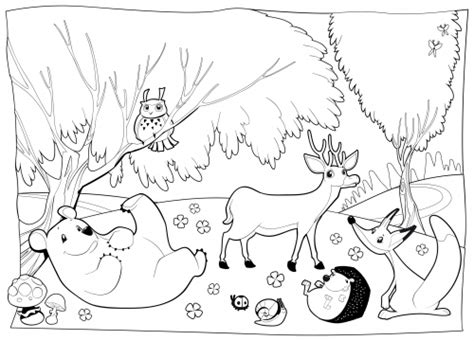 free coloring pages woodland animals forest animal coloring pages bestofcoloring com