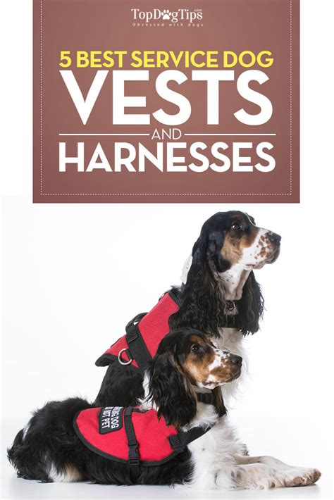 best dogs for service top 5 best service vests and harnesses for working dogs 2017