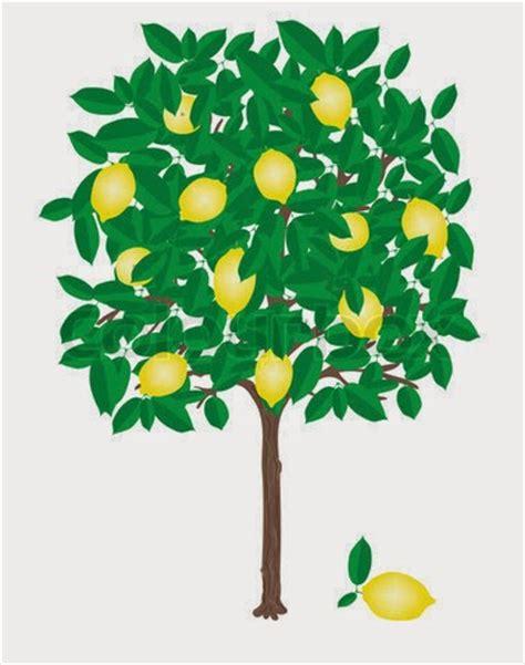 wallpaper daun berguguran bergerak kumpulan gambar pohon kartun lucu gambar pohon buah tree