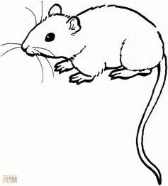 simple mouse drawing drawing art gallery