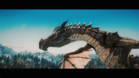elder scrolls  skyrim dragon wyvern video games