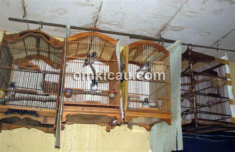 Mainan Kucing Hewan Model Sangkar Tikus ak sangkar gantung praktis ekonomis dan hemat tempat klub burung