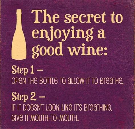 the secret to a successful step by step guide 2017 edition books 25 best ideas about wine sayings on
