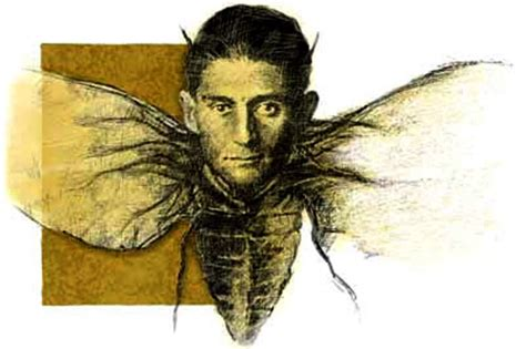 kafka in light of the books franz kafka flies around intent on not