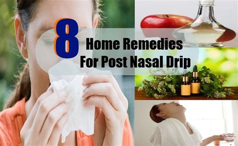 8 home remedies for post nasal drip search home remedy