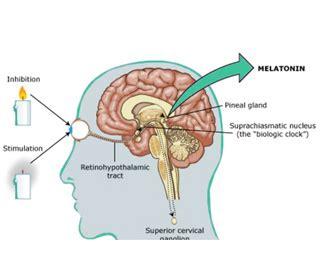 natural ways  promote melatonin production  sleep studies