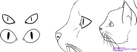 how to draw doodle cat 1 how to draw cat step by step pets animals free