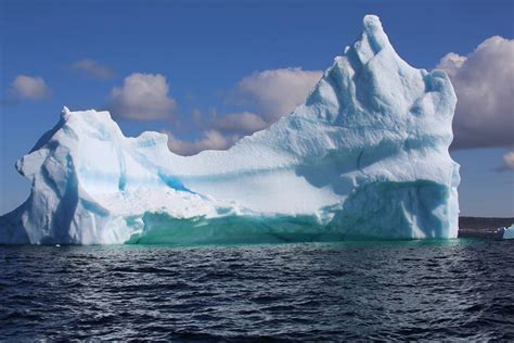 icebergs glaciers revised edition books the best place to see newfoundland icebergs eco