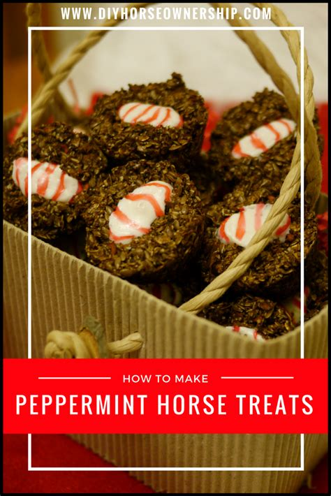 how to make treats diy how to make peppermint treats diy ownership
