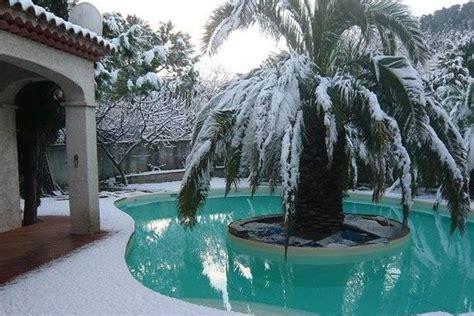 palme da terrazzo palma pianta piante da giardino palma pianta