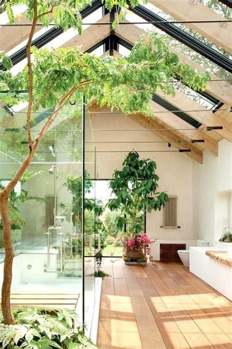 modern plants indoor 34 interior designs with indoor trees messagenote