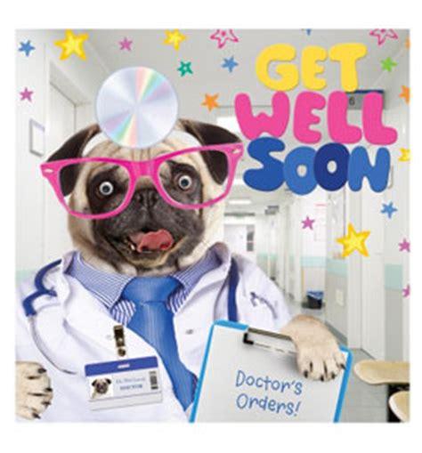 get well soon pug get well soon pug card i pugs