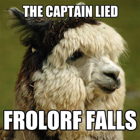 Alpaca Memes - alpaca memes www imgkid com the image kid has it