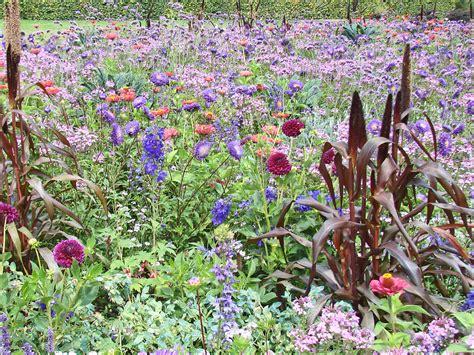Planter En Juin by Quelle Fleur A Planter En Juin