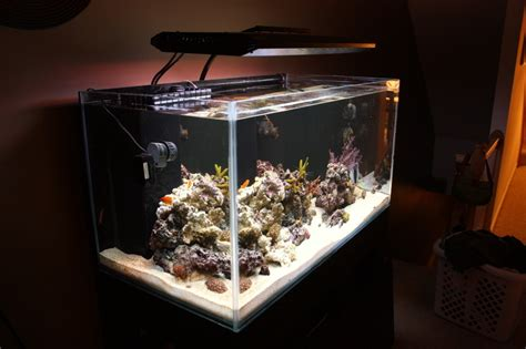aquarium design exle modern aquarium design for reef aquaria and freshwater