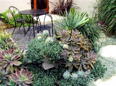 the best plants for shaded areas interior design ideas