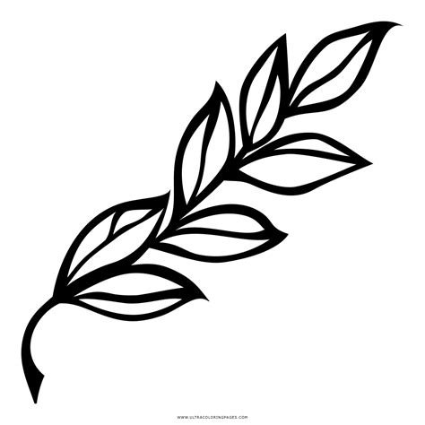 imagenes tumblr png para colorear dibujo de rama de laurel para colorear ultra coloring pages