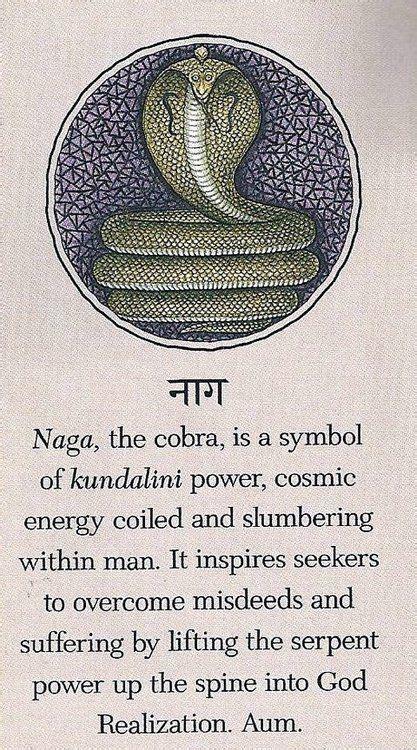 hindusa naga  cobra   symbol  kundalini power