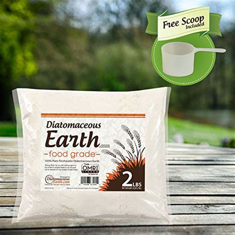 diatomaceous earth food grade bed bugs diatomaceous earth 2 lbs food grade de includes free