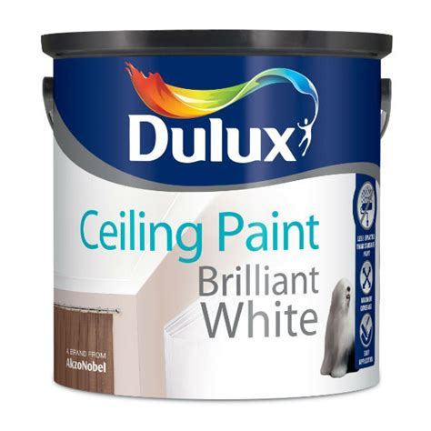 dulux bathroom paint review dulux ceiling paint white blog avie