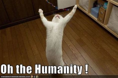 Oh The Humanity Meme - wingerjock oh the humanity the pope and paul ryan