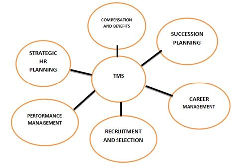 starting a talent development program what works in talent development books talent management system definition human resources hr
