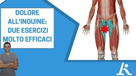dolore interno coscia inguine dolore all inguine due esercizi utili