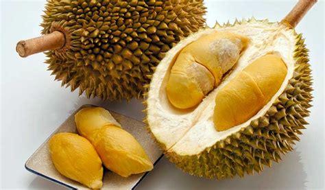 Interior Color by Frutas Tropicales De Malasia Carnosas Y Dulces Turismo