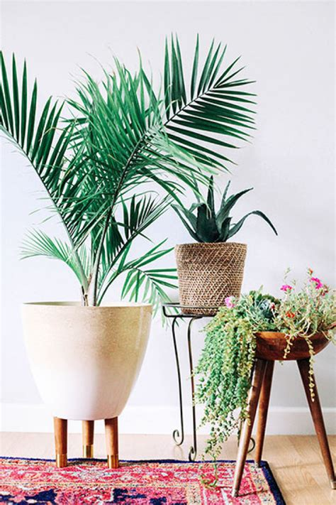 Planter Indoor by Mid Century Indoor Planters