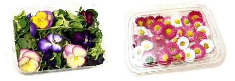 fiori commestibili vendita fiori edibili gli orti di venezia