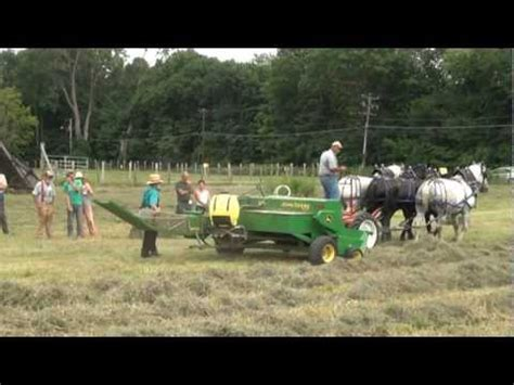 amish plowing with a seven hitch powered baler funnydog tv