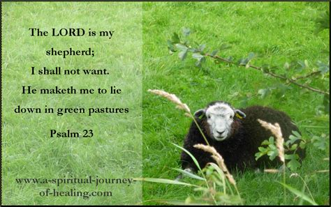 Comfort Bible Psalm 23 The Lords My Shepherd Prayer