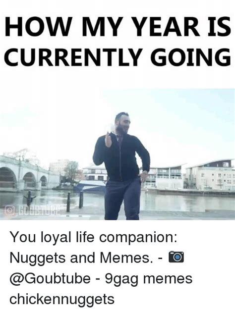 year     loyal life companion