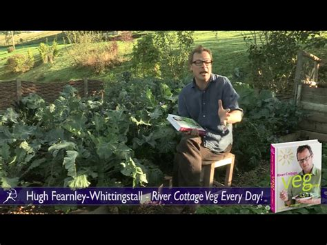 River Cottage Everyday by River Cottage Veg Every Day River Cottage Every Day