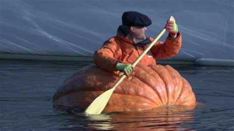 giant pumpkin boat pumpkin boat paddled down river ouse in york