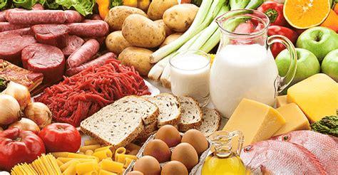 tipos de alimentos tipos clases clasificaciones estilos formas