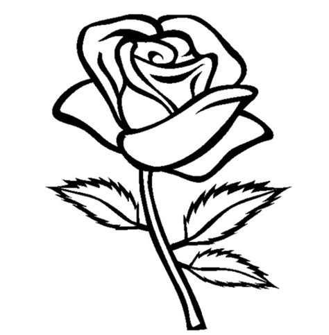 Yellow Rose Coloring Page | yellow rose coloring pages coloringstar