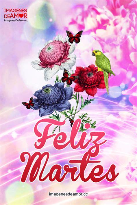 imágenes tiernas de feliz martes imagenes de aves y flores con movimiento imagenes