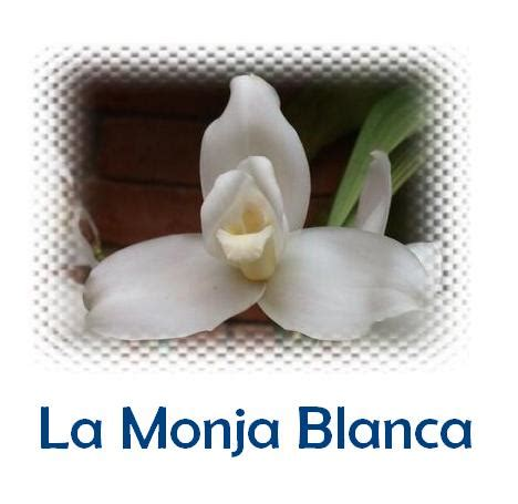monja coje con el padre la monja blanca miblogchapin s blog