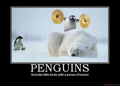 Penguin Memes - 10 best demotivational posters involving animals