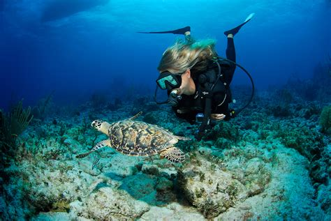 Best Diving In The Caribbean by Cayman Brac The Best Shore Diving In The Caribbean X