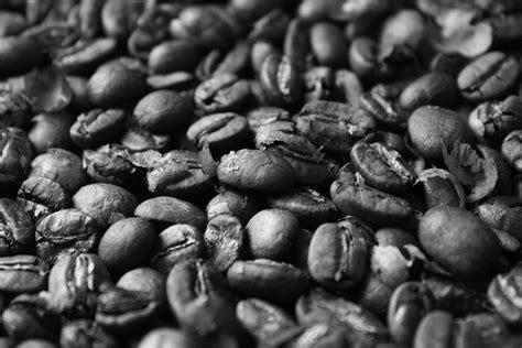 Pola Polka Dot Monochrome gambar abstrak hitam putih tengkorak pola lukisan hiasan