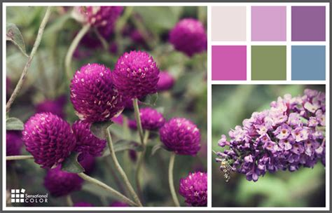 spring color schemes spring color palette sensational color