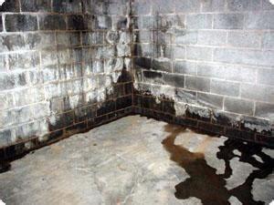 tc hafford basement systems basement waterproofing photo
