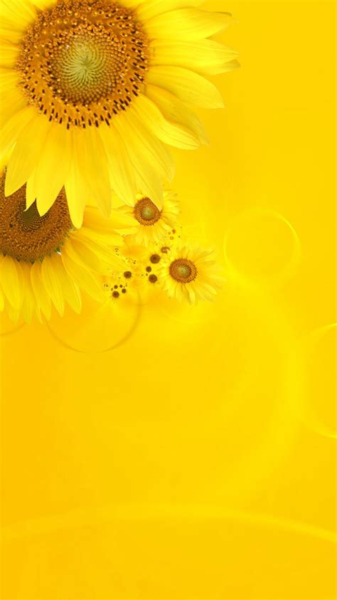 hd yellow iphone wallpapers