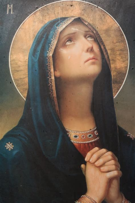 biography of mother mary zephyrinus the immaculate conception of the blessed